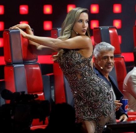 Reality show musical deve trocar dois técnicos em 2015 (TV Globo/Divulgação)