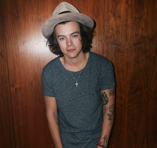 One Direction: Harry Styles pode engatar carreira solo como cantor e ator