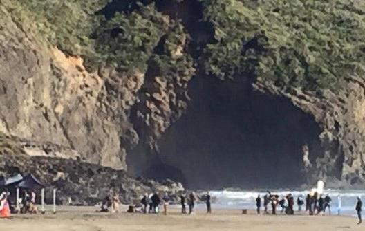 Gravação de novo clipe de Taylor Swift agride habitat da Nova Zelândia, aponta imprensa local