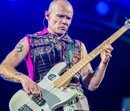 Flea teve problemas com remédios após largar outras drogas (Wikimedia)